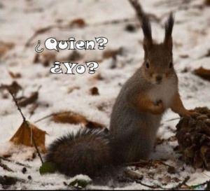 Quien-Yo2