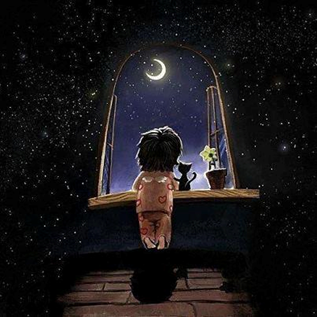 Noche con estrella